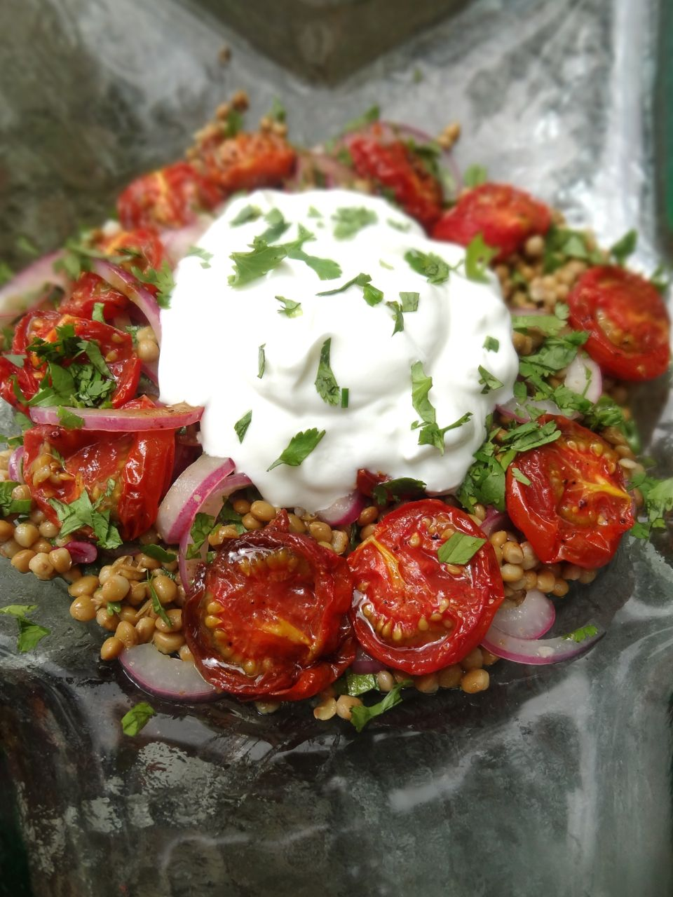 ... castelluccio lentils with tomatoes and gorgonzola from his award
