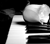 a white rose on a piano.