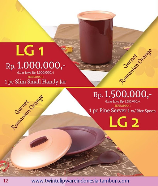 Level Gift 1 & 2 Twin Tulipware Januari 2016
