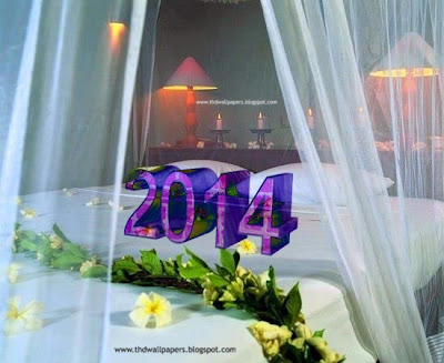 Latest Lovely Happy New Year 2014 Wallpapers
