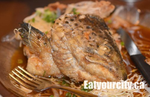 Eat your city shogun japanese restaurant edmonton ab for What to eat with fried fish