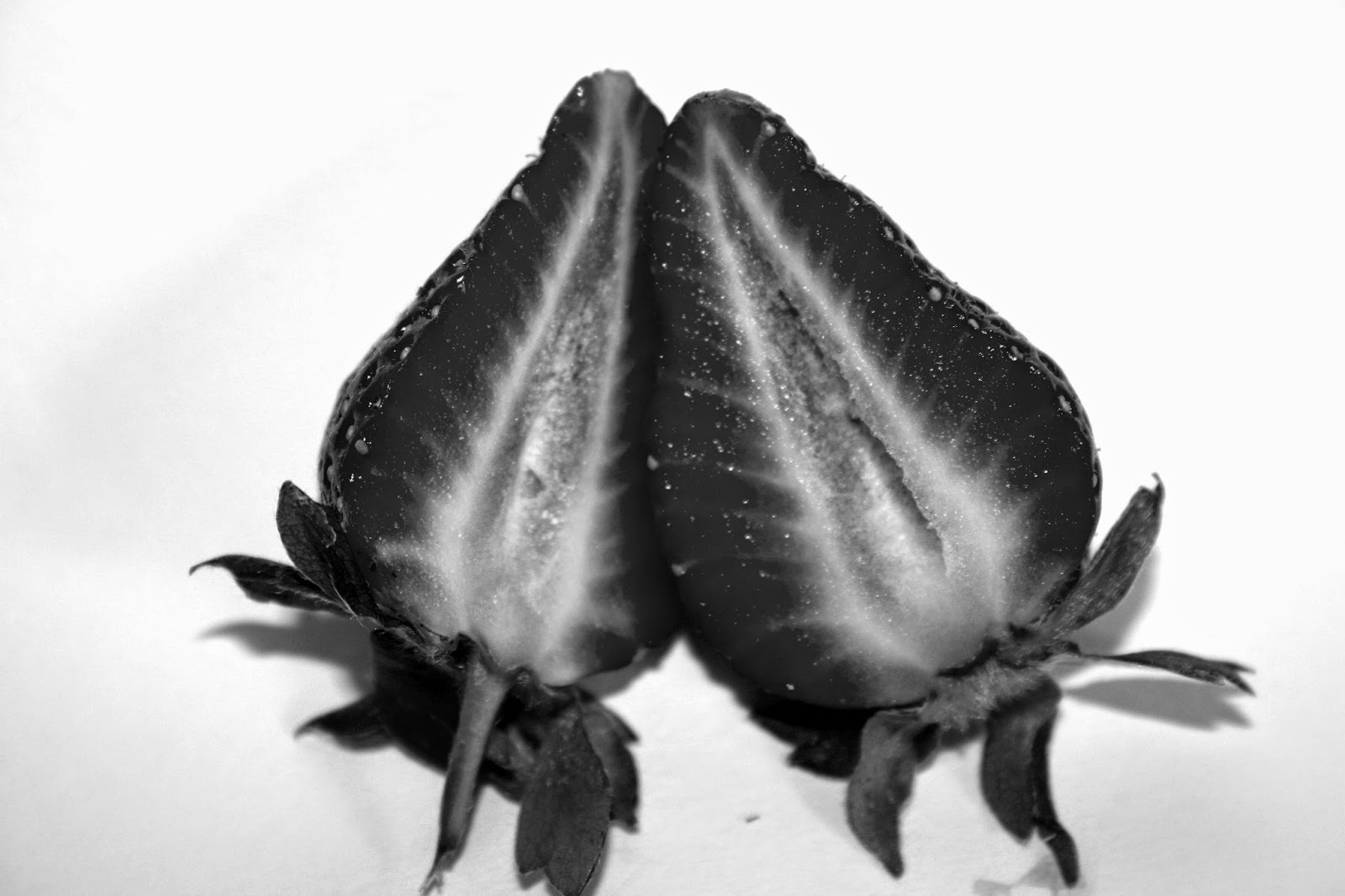 term 2 symbols in fruit and vegetables black and white