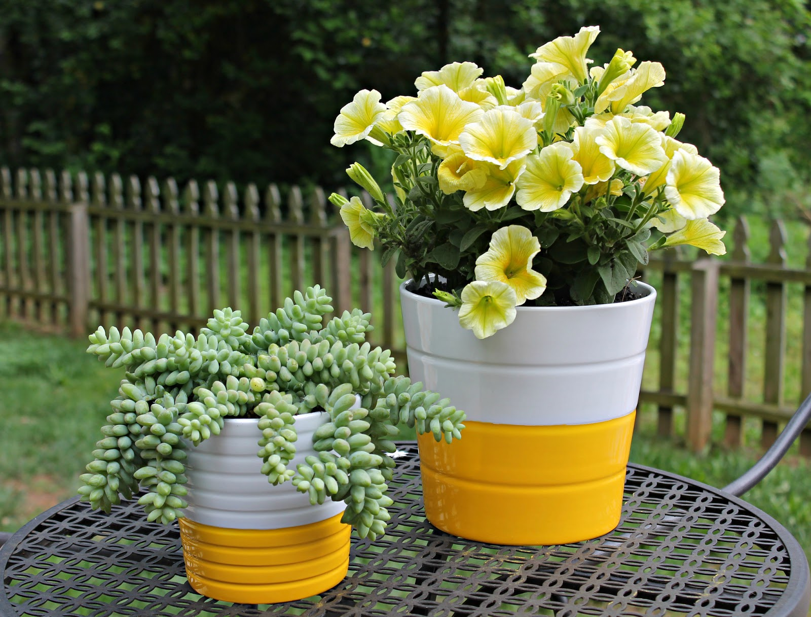Planty Projects DIY Bright Summer Pots Carolina Charm
