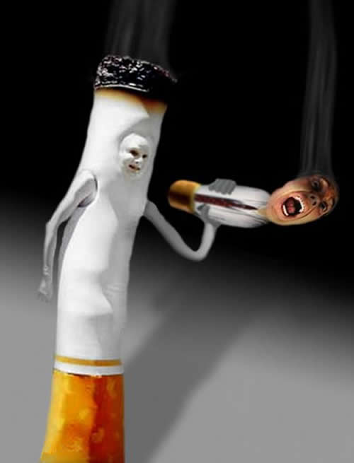 Tabaco en Bolivia