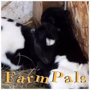 Farm Pals