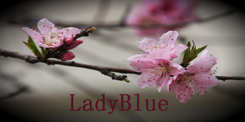 La caja de LadyBlue