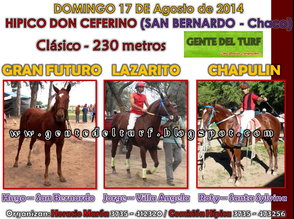San bernardo 17-08 Mas