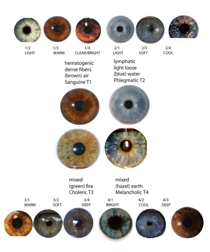 Eye Types & Iridology | expressing your truth blog