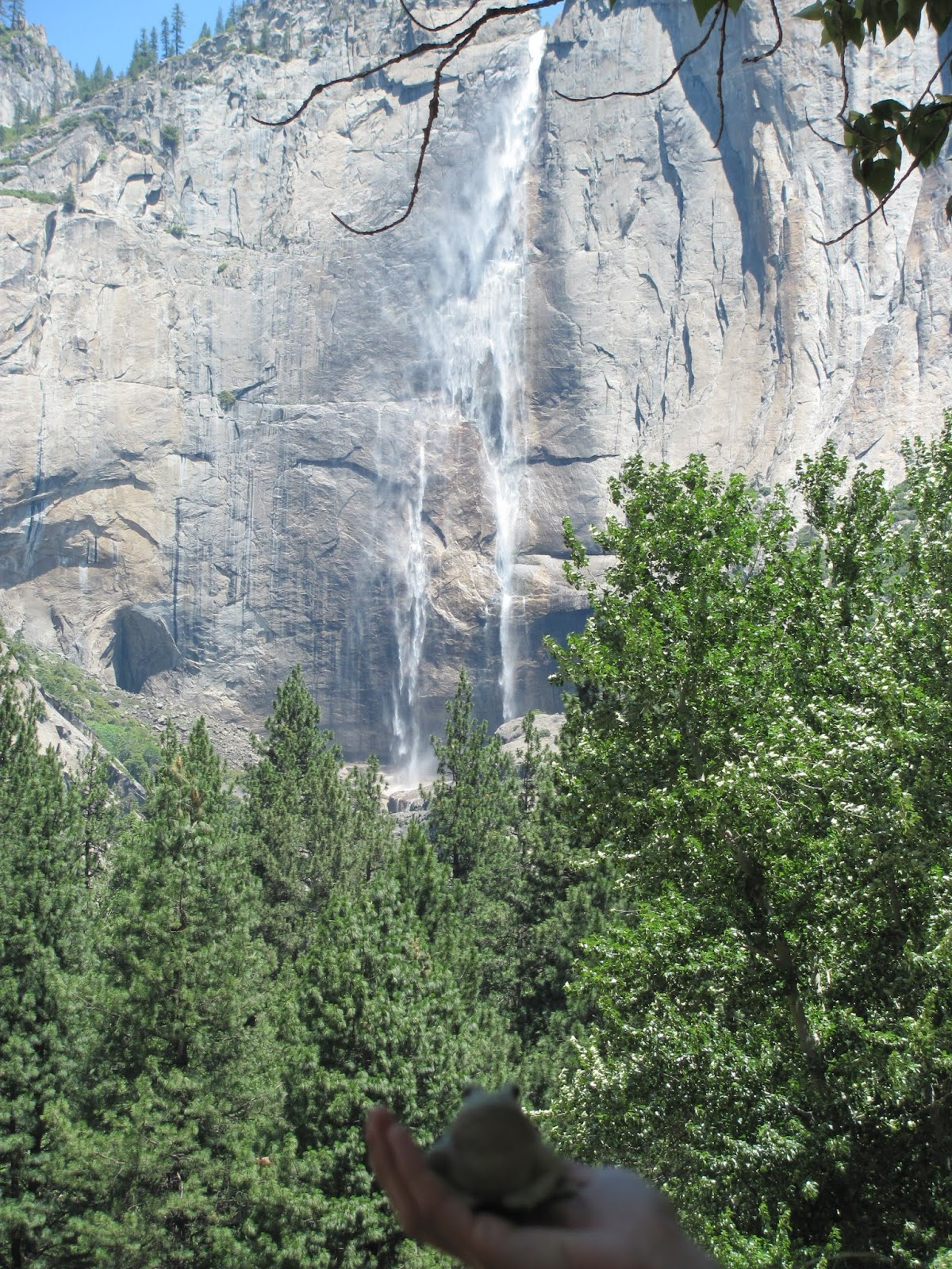Yosemite Falls cascade to the valley floor with Frog at Yosemite National Park, California