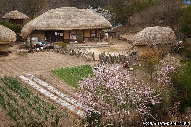 Yang Dong Traditional Village (양동 한옥마을)
