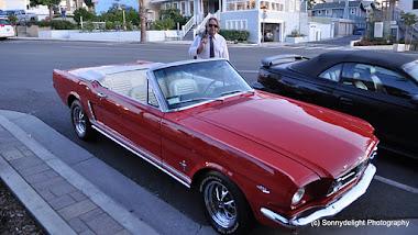 GUMSHOE DIARIES: HB Mustang