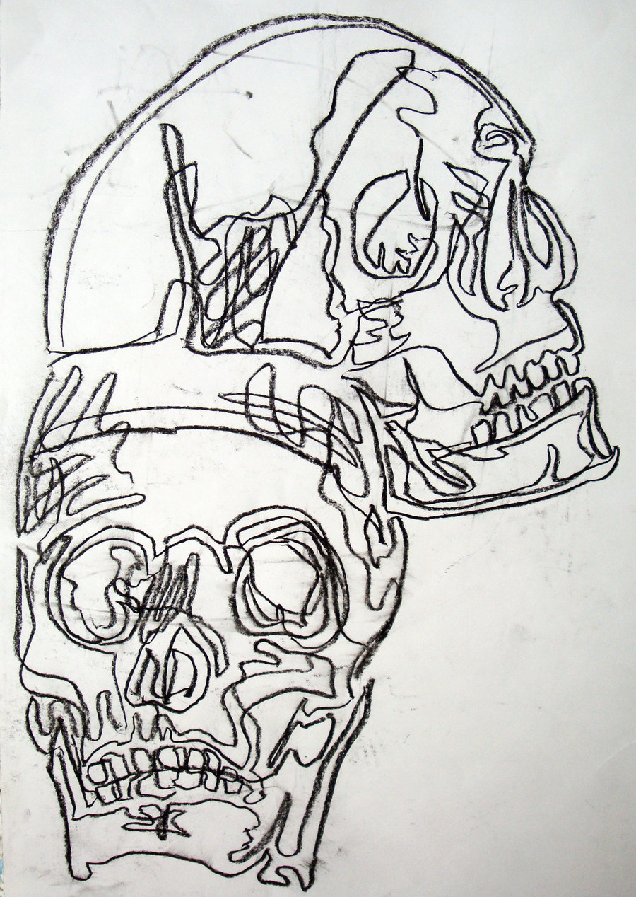 Contour Line Drawing Pdf : Basic drawing continuous contour skulls