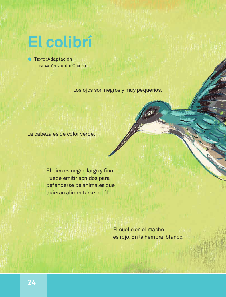 El colibrí - español lecturas 3ro 2014-2015