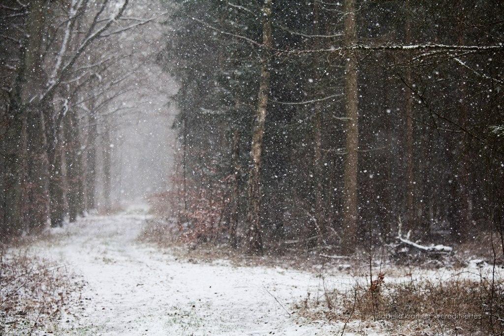 Kinder Gedichte Welt Der Erste Schnee