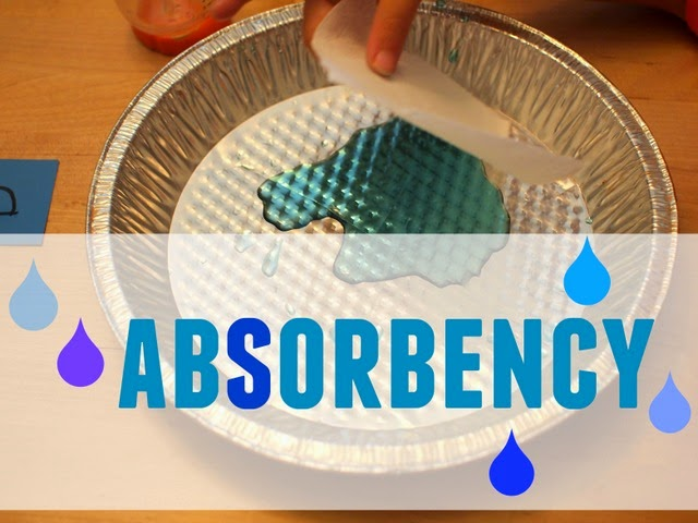 Preschool Science- Test the Absorbency of toilet paper