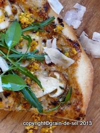 http://salzkorn.blogspot.fr/2011/10/pizza-nobelpreis-pizza-mit-steinpilzen.html