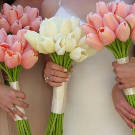 Choose Tulips for a Delicate and Special Wedding Bouquet