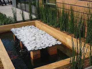 fish pond design for minimalis home