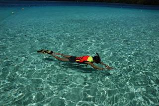 パラオ ダイビング クルーズ ツアー 世界遺産 観光