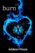 Burn (Celestra Series Book 3)