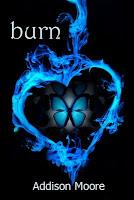 Burn (Celestra Series Book 3)