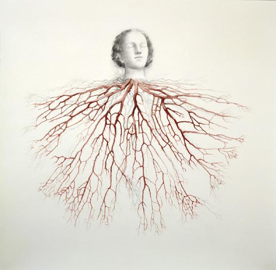 Doctor Ojiplático. Juul Kraijer. Artwork