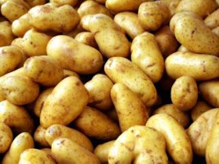 Ранні, середньопізні тапізні сорти картоплв - характеристики