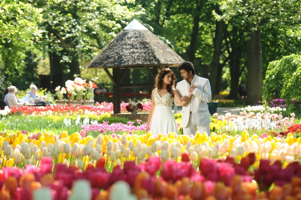 Vijay And Ileana in Nanban Stills images  hdimagelibcom