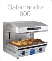 http://www.amenajarihoreca.ro/2012/06/salamander-tip-600-profesional-pret.html