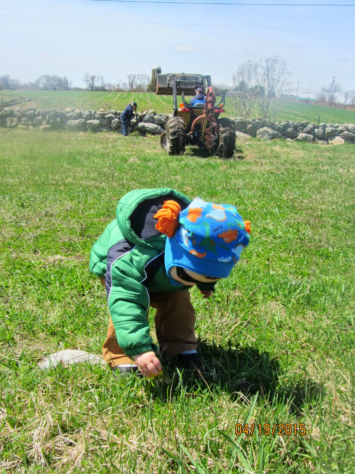 Exploring the Pasture