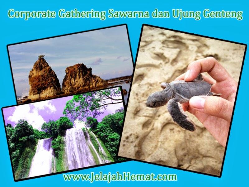 Info Paket Corporate Gathering Sawarna dan Ujung Genteng Jelajah Hemat