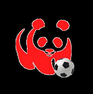 Forlì calcio: dal gol al blog