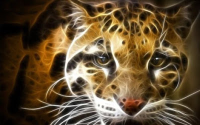 wallpapers hd 3d animales leopard - illustrations of animals
