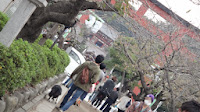 http://border-polly.blogspot.jp/2013/11/blog-post.html