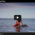 The most awaited ABS-CBN Teleseries DYESEBEL Trailer 2014