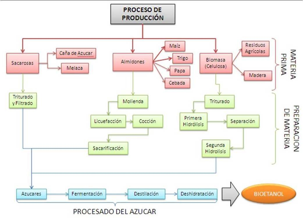 Microbiolog a umh optimizaci n del proceso de obtenci n for Descripcion del proceso de produccion
