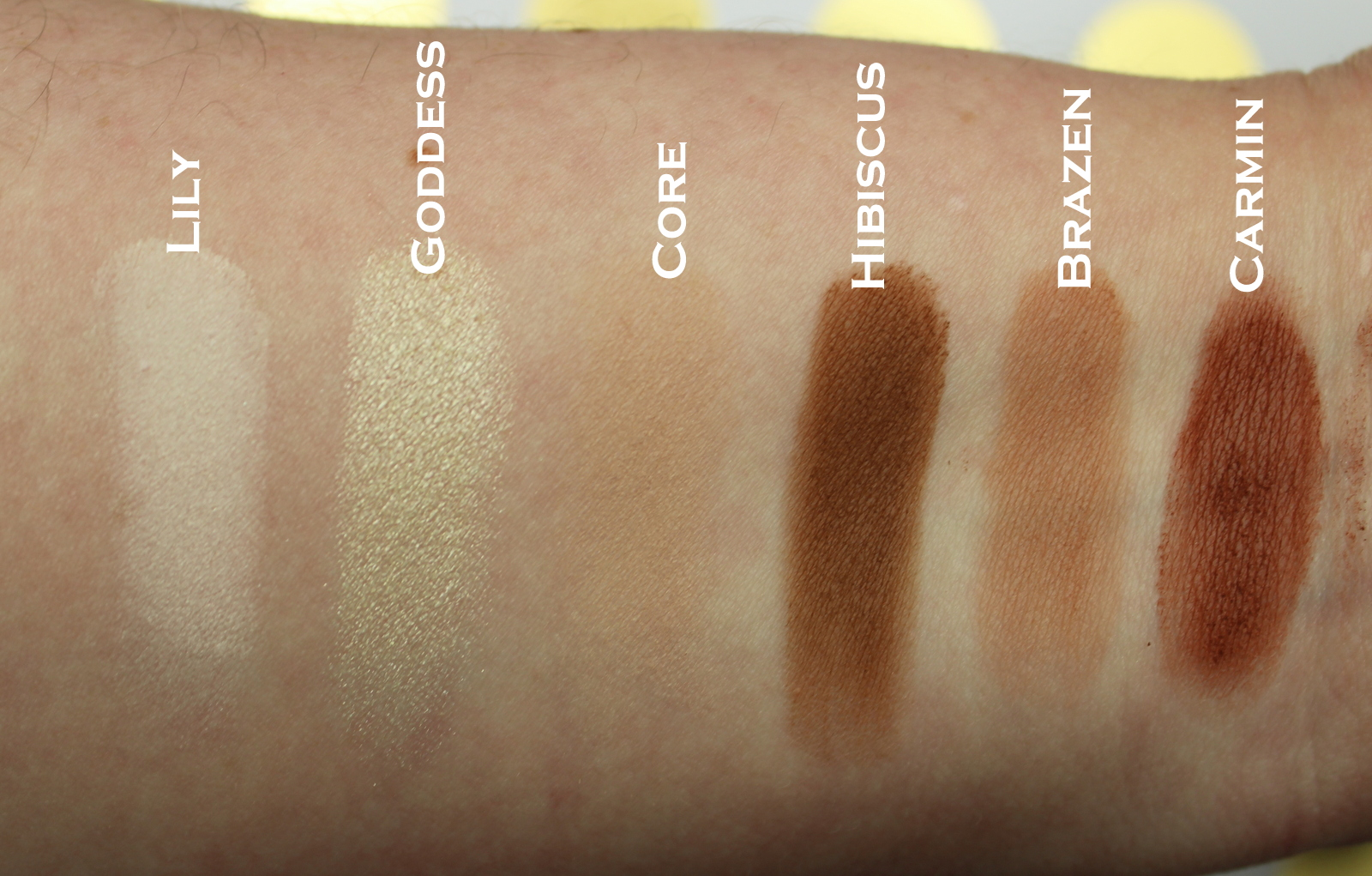 Blank Canvas Cosmetics Master Series Palette One review, photos ...