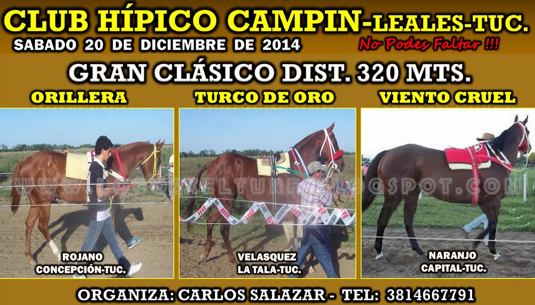 20-12-14-HIP.CAMPIN-TUC.