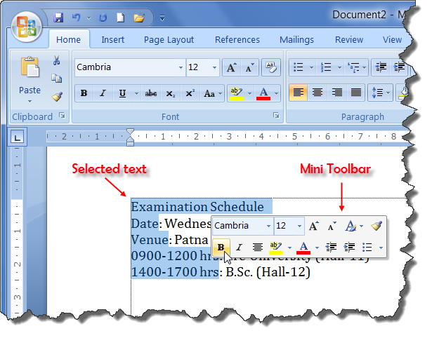 Mini Toolbar of MS Word 2007