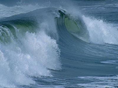 Laut lempeng benua dan lempeng samudera lubuk laut palung laut