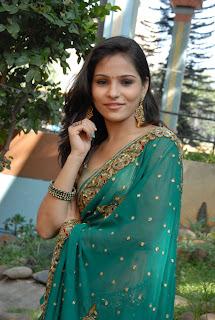 Zareen Khan Saree Pictures 09.jpg