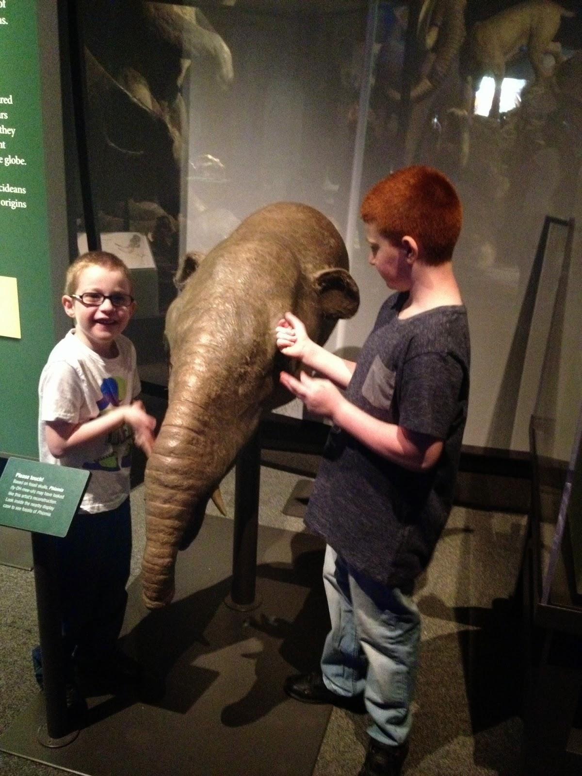 Mammoths exhibition