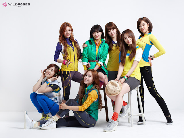 T-ara Wild Roses Wallpaper HD Group