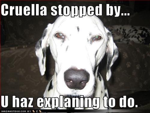 Cruella Stopped