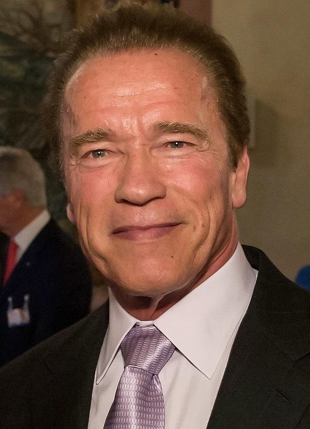 Schwarzenegger, Arnie, Terminator, Expendables