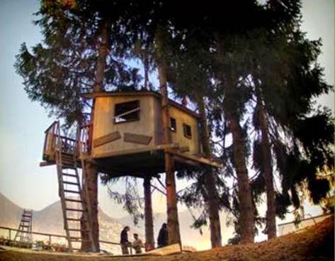 Arredo in costruire una casa sull 39 albero - Casa sull albero da costruire ...
