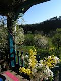 Ruim dorpshuis met grote tuin te koop of  te huur