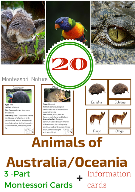 Australia Themed Free Printables. - Montessori Nature