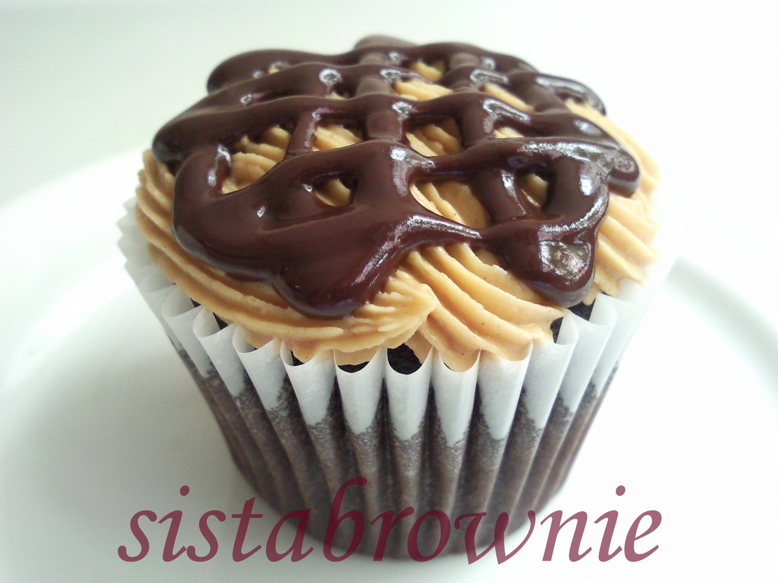 Sistabrownie chocolate peanut butter chcocolate cream for Chocolate fudge cream cheese frosting