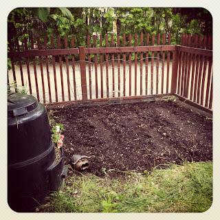 Newly planted urban Garden
